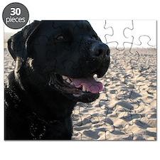 black_lab Puzzle