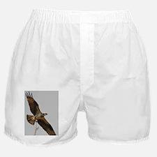 5x3oval_sticker 2 Boxer Shorts