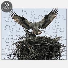 4.25x4 Puzzle
