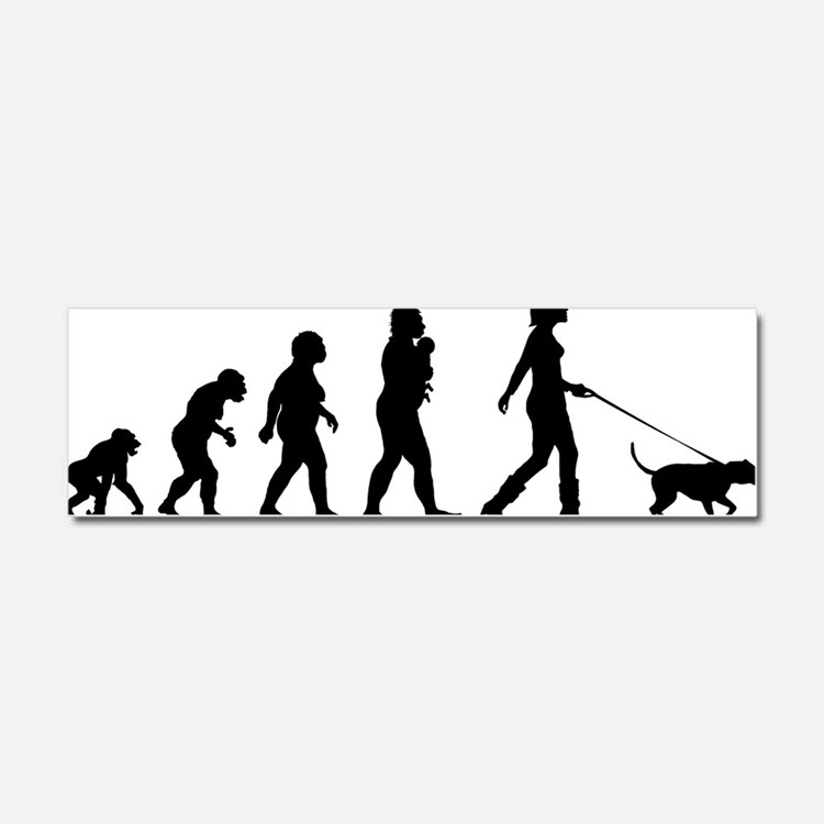 Dogwalking Car Magnet 10 x 3