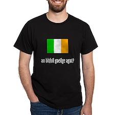 an bhfuil gaeilge agat? T-Shirt