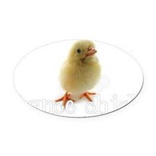 2-DanceChick_wh Oval Car Magnet