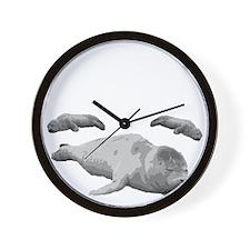 seal5 Wall Clock