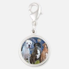 T-Starry Night - 3 Boxers Silver Round Charm