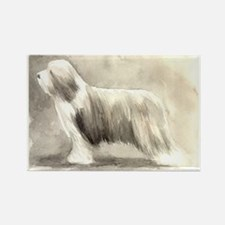 Unique Bearded collie Rectangle Magnet (10 pack)