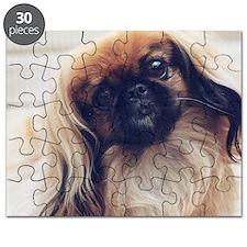 26312530_069 Puzzle