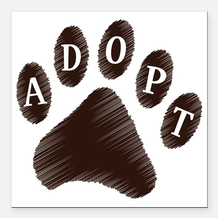 "2-adopt claw Square Car Magnet 3"" x 3"""