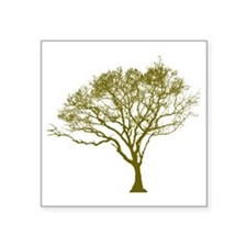 "Green Tree Square Sticker 3"" x 3"""