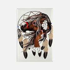 Paint Horse Dreamcathcer Trans Rectangle Magnet