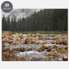 Spearfish Canyon Tile Puzzle