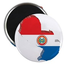 MapOfParaguay2 Magnet