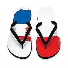 MapOfParaguay2 Flip Flops
