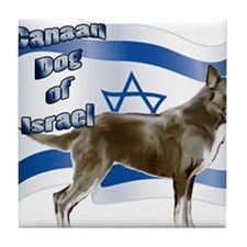 Canaan dog of Israel Tile Coaster
