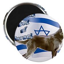 Canaan dog of Israel Magnet