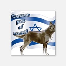 """Canaan dog of Israel Square Sticker 3"""" x 3"""""""