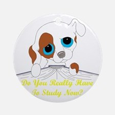 studynowtransuse Round Ornament