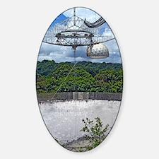 DSC_0337poster Sticker (Oval)