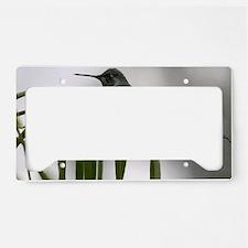 IMG_1605 License Plate Holder