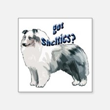 "blue merle shelty2 Square Sticker 3"" x 3"""