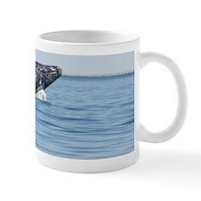 2-IMG_1112 Mug