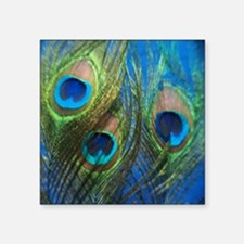 "blue peacock feathers Square Sticker 3"" x 3"""
