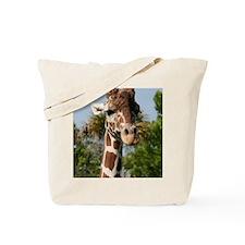 IMG_2543 Tote Bag
