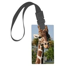 IMG_2543 Luggage Tag