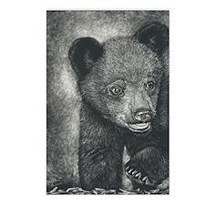 Black Bear Cub in Scratch Postcards (Package of 8)