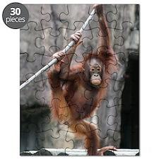 IMG_6945 Puzzle