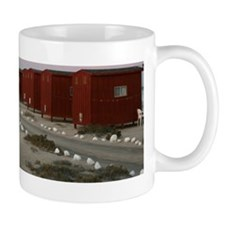 IMG_8730 Mug