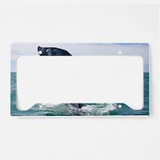 3-IMG_9025 License Plate Holder