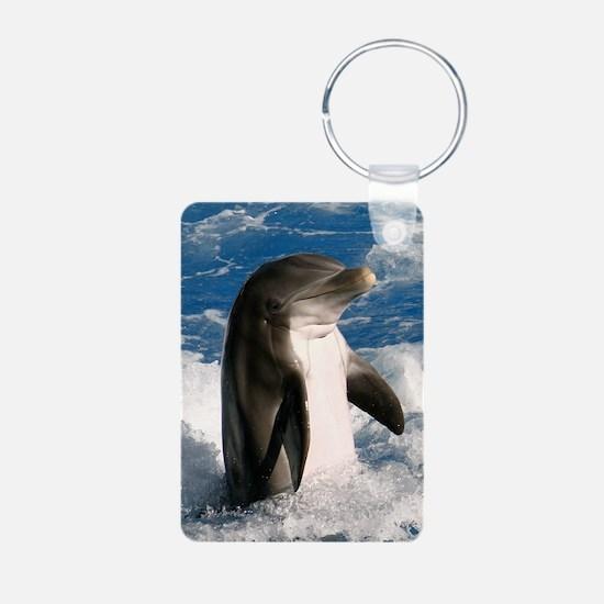 dolphin5 Keychains