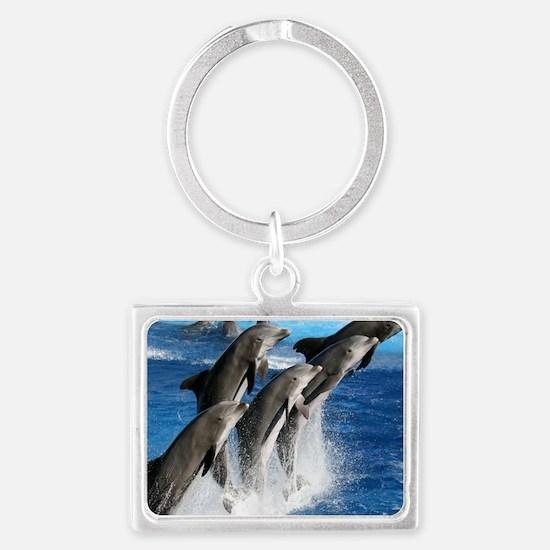 dolphin6 Landscape Keychain