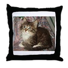 Maine Coon Kitten Keagan Throw Pillow