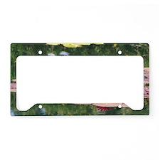 IMG_2508 License Plate Holder