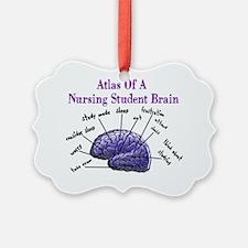 Atlas of Nursing Student Brain Ornament
