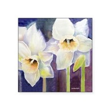 "SQ Daffs for CP BOX 200 Square Sticker 3"" x 3"""