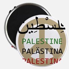 Peace in Palestine Magnet