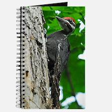 9x12_print   3 Journal