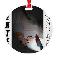 2-Visor light copy Ornament