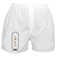 "Alvin in Hieroglyphics ""Color Boxer Shorts"
