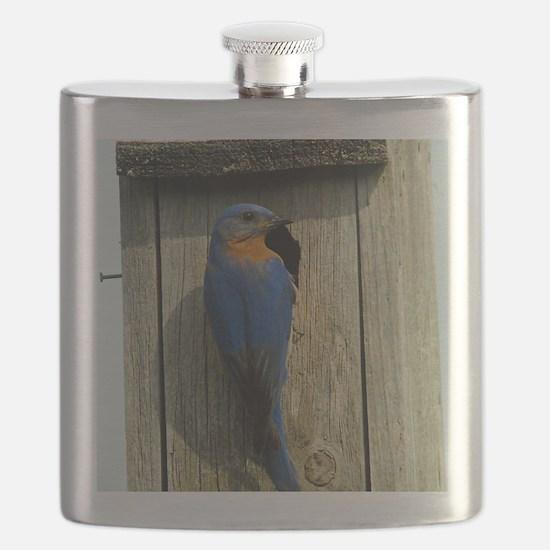 11x11_pillow 3 Flask