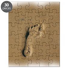 10x10footprint. Puzzle