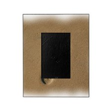 10x10footprint. Picture Frame