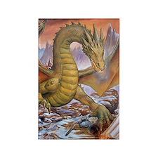 a dragon port Rectangle Magnet