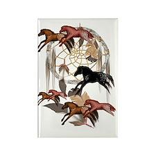 Dream Horses 3x4 Trans Rectangle Magnet