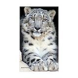 Leopard Single
