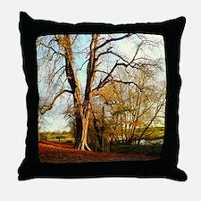 Trees in autumn sunshine. Throw Pillow