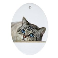 Blue Eyed Cat Ornament (Oval)