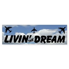 Living The Dream Bumper Car Sticker